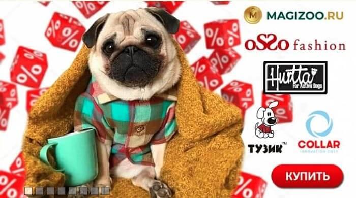 Интернет-магазин зоотоваров - Magizoo.ru